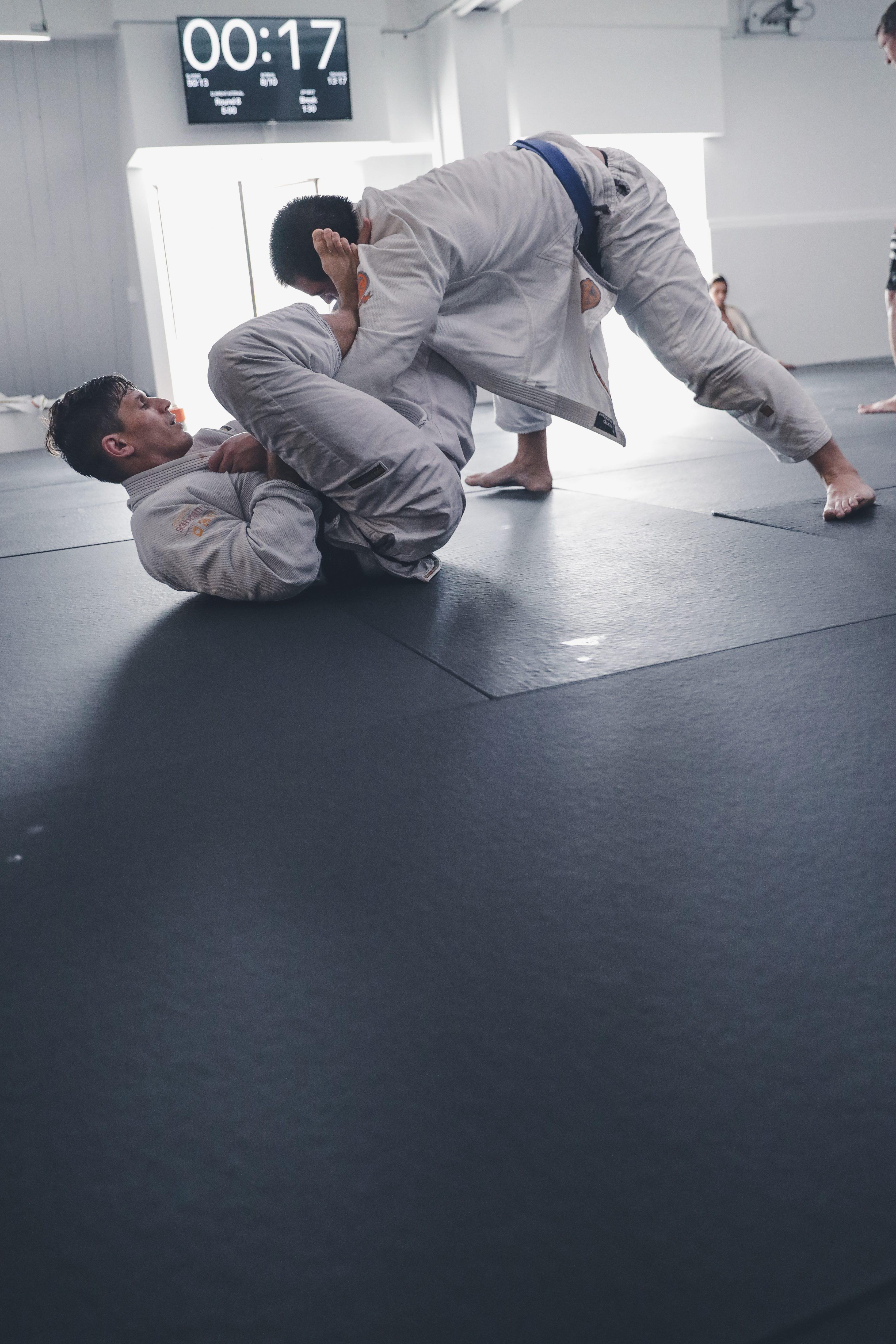 Jiu Jitsu Shadows