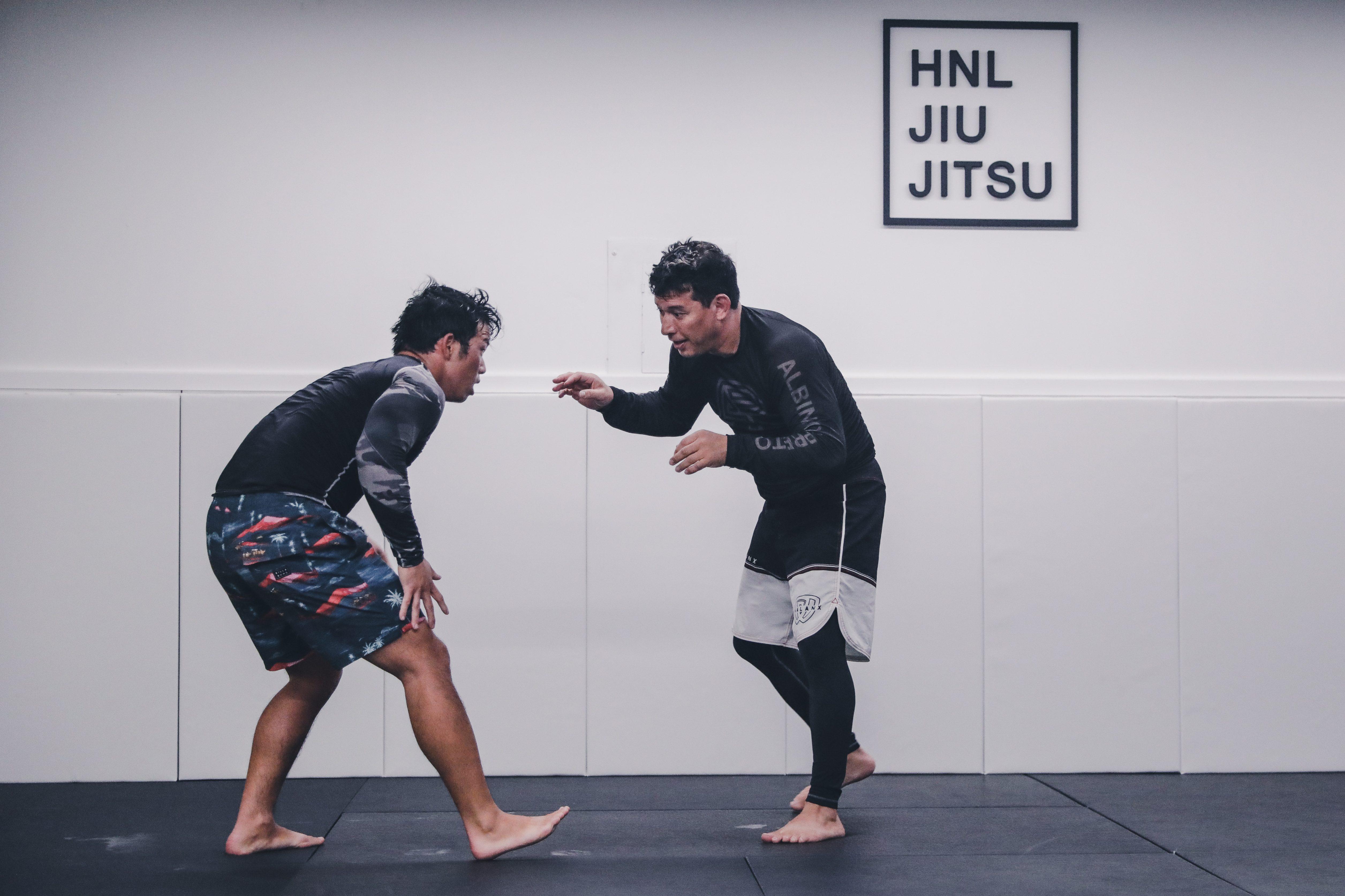 Stand Up Jiu Jitsu