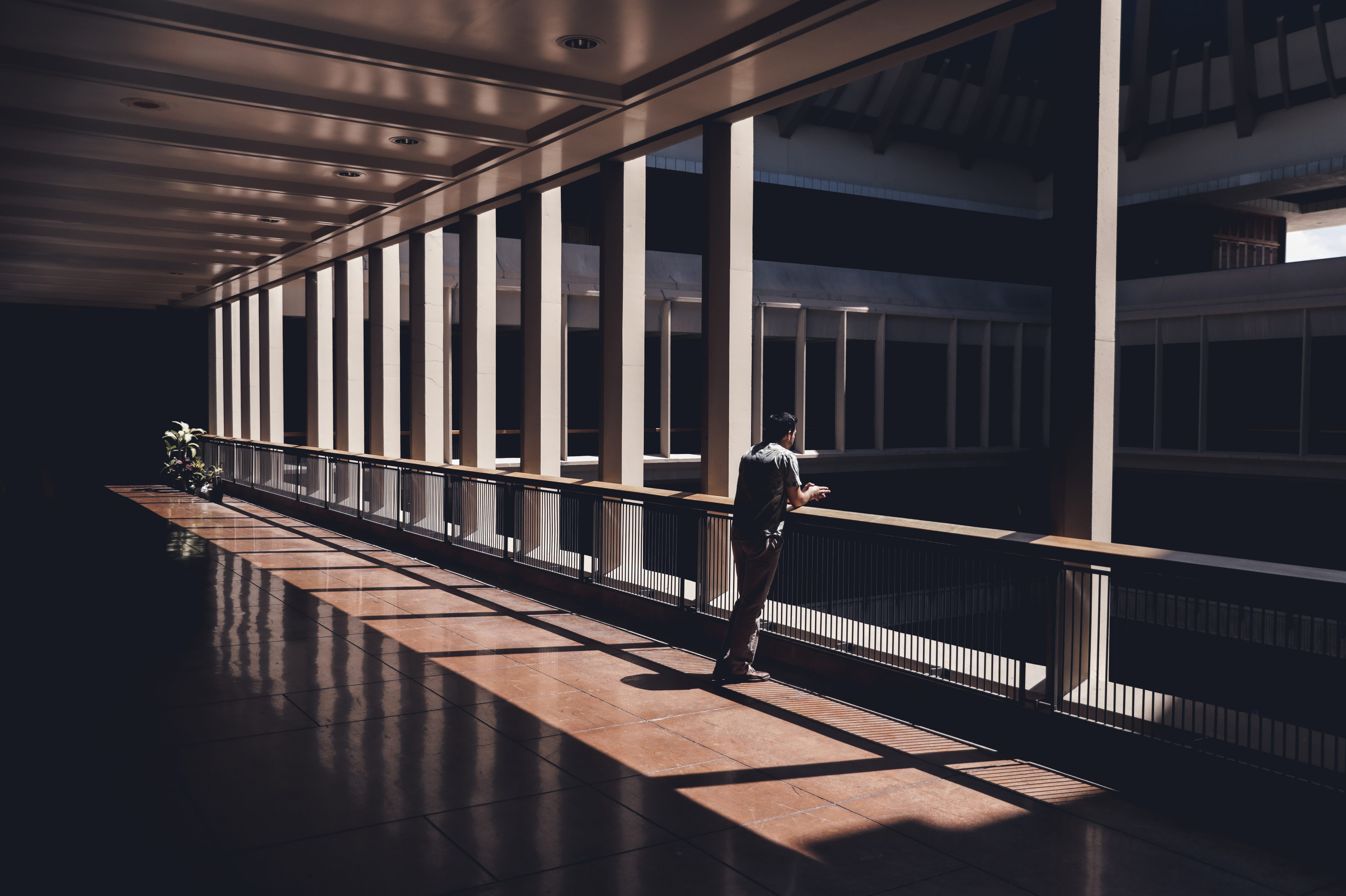 Hawaii State Capitol Shadows